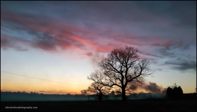 Winter fires_frame